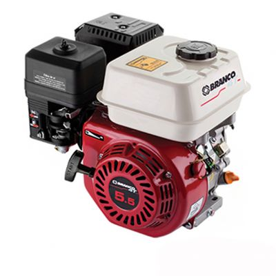 Motor B4t 6,5hp s/ Alerta Oleo