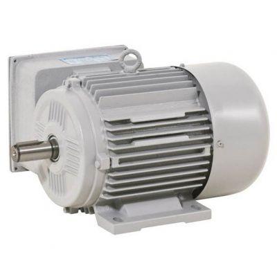 Motor Iip Monof 02cv Ip56